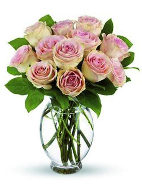 12 rose rosa chiaro a domicilio