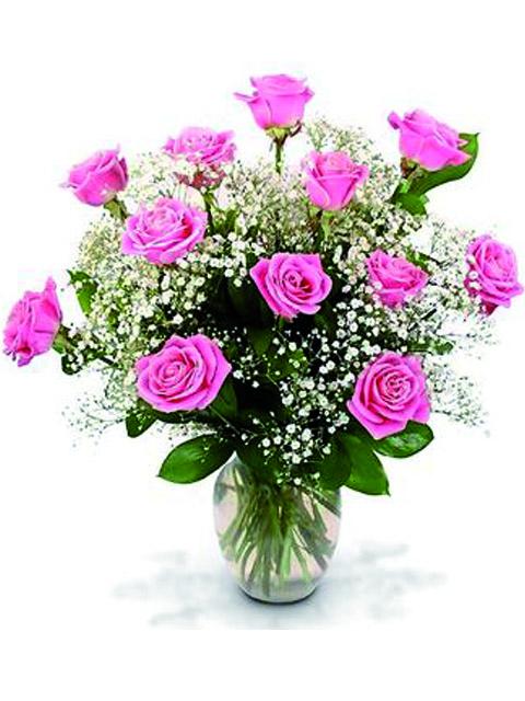 12 rose rosa a domicilio