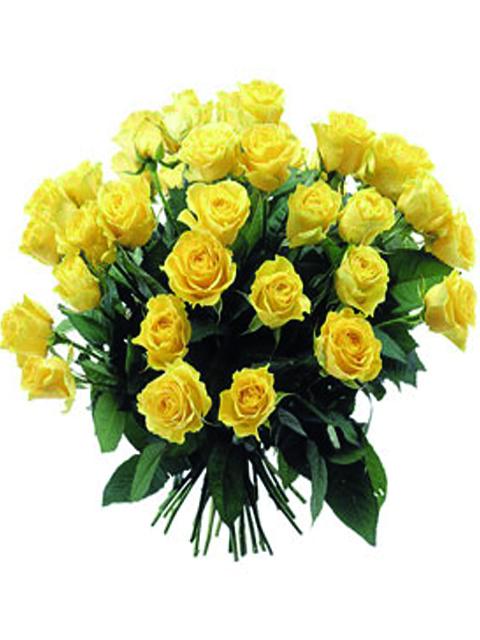 36 rose gialle a domicilio