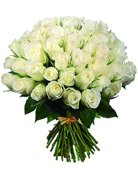 50 rose bianche a domicilio