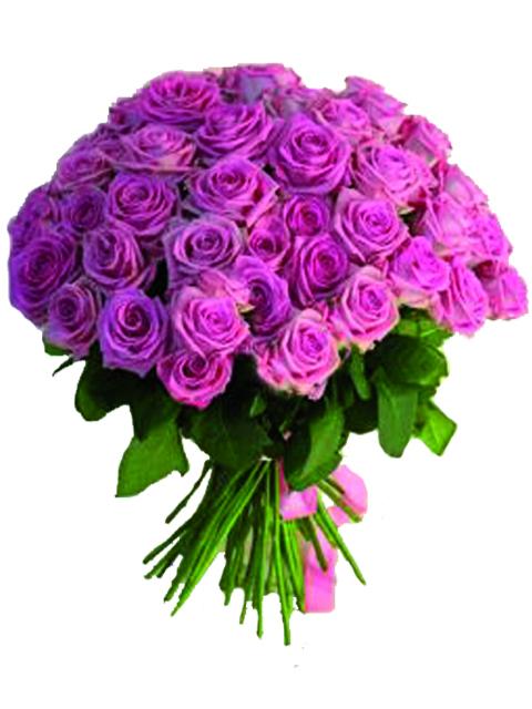 50 rose rosa a domicilio