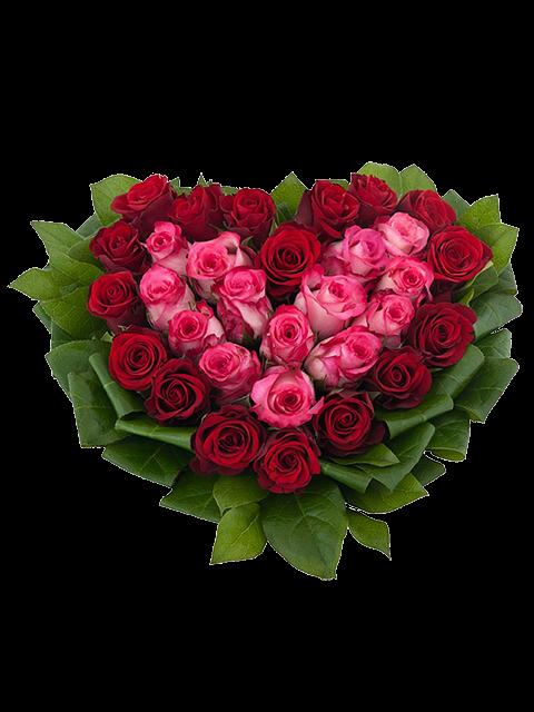 cuore di rose rosse e rose rosa