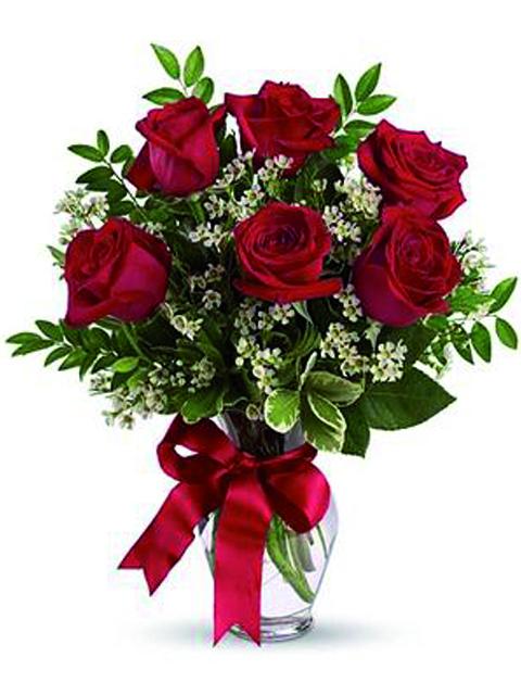 sei rose rosse a domicilio