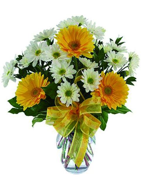 bouquet di gerbere e margherite
