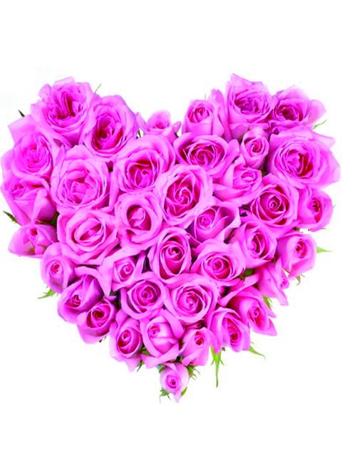 cuore di rose rosa a domicilio